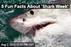 5 Fun Facts About 'Shark Week'